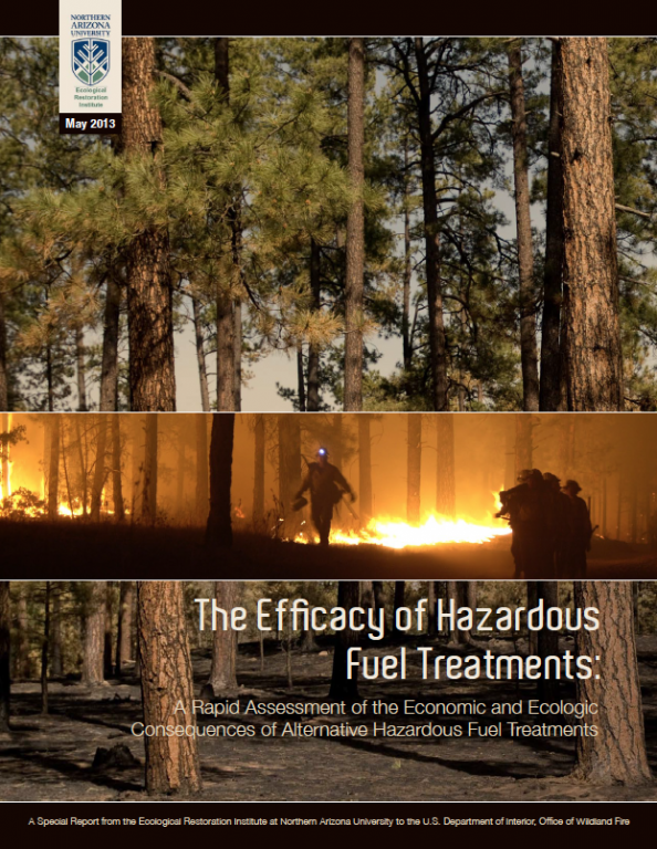 The Efficacy of Hazardous Fuel Treatments