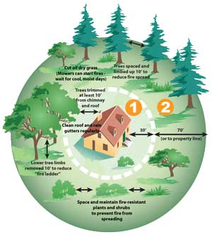 Defensible Space and Fire Safe Landscaping in San Mateo County